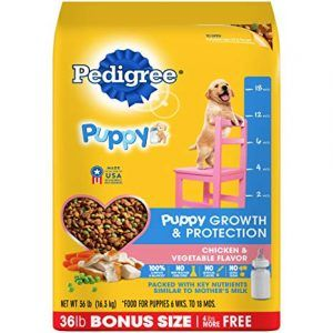 Pedigree Puppy