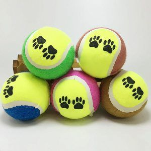 Cricket Ball Mini Tennis For Dogs