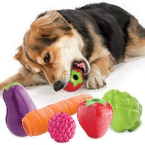 Orbee Tuff Fruit Dog Toy